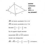 LYS benzerlik çözümlü sorusu