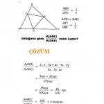 LYS sınavlarına hazırlık üçgende alan sorusu ve çözümü