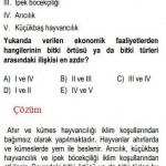 Türkiyenin İklimiyle ilgili Çözümlü Sorular KPSS