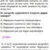 Paragraf Anlamıyla İlgili Çözümlü SBS Soruları