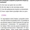 Paragraf Anlamıyla  İlgili Çözümlü Sorular SBS