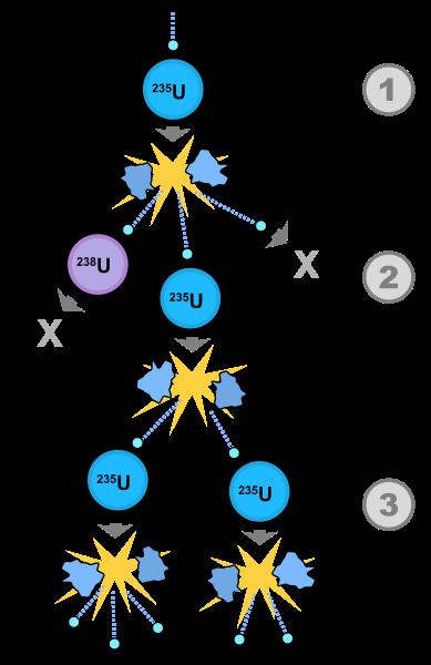cekirdek-1